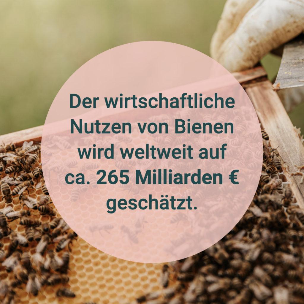 """Auf diesem Bild sieht man den Text """"Der wirtschaftliche Nutzen von Bienen wird weltweit auf ca. 265 Milliarden Euro geschätzt."""""""